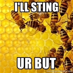 Honeybees - I'LL STING UR BUT