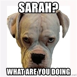stahp guise - SARAH? WHAT ARE YOU DOING