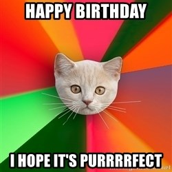 Advice Cat - Happy birthday i hope it's purrrrfect