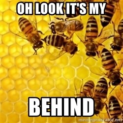 Honeybees - OH LOOK IT'S MY BEHIND