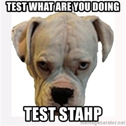 stahp guise - Test what are you doing Test stahp