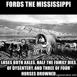 Oregon Trail Vindictus - Fords the mississippi loses both axles, half the family dies of dysentery, and three of four horses drowned