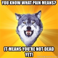 Courage Wolf - you know what pain means? It means you're not dead yet!