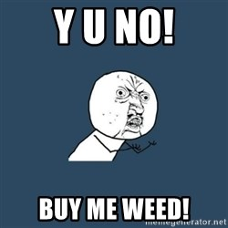y you no - Y U No! Buy Me Weed!