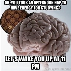 Scumbag Brain - OH, YOU TOOK AN AFTERNOON NAP TO HAVE ENERGY FOR STUDYING? LET's WAKE YOU UP AT 11 PM