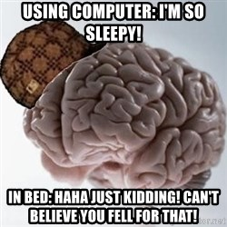Scumbag Brain - Using computer: I'm so sleepy! In bed: haha just kidding! Can't believe you fell for that!