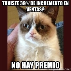 Tard the Grumpy Cat - TUVISTE 39% DE INCREMENTO EN VENTAS? NO HAY PREMIO