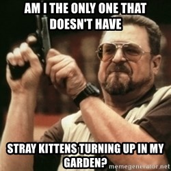 Walter Sobchak with gun - Am I the only one THAT DOESN'T HAVE stray kittens turning up in my garden?
