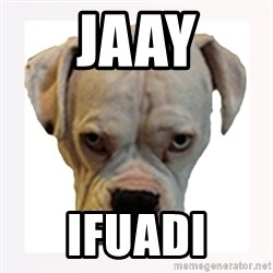 stahp guise - Jaay ifuadi