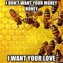 Honeybees - I DON'T WANT YOUR MONEY HONEY I WANT YOUR LOVE