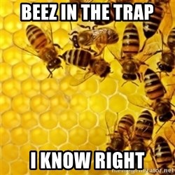 Honeybees - BEEZ IN THE TRAP I KNOW RIGHT