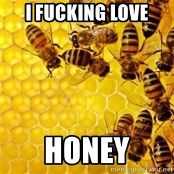 Honeybees - I FUCKING LOVE HONEY