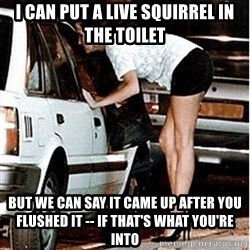 Karma prostitute  - i CAN PUT A LIVE SQUIRREL IN THE TOILET BUT WE CAN SAY IT CAME UP AFTER YOU FLUSHED IT -- IF THAT'S WHAT YOU'RE INTO