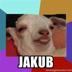 High goat - jakub