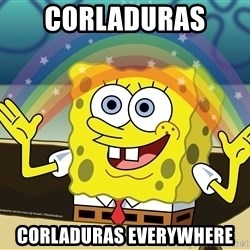 spongebob rainbow - Corladuras  Corladuras everywhere