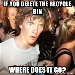 sudden realization guy - if you delete the recycle bin where does it go?