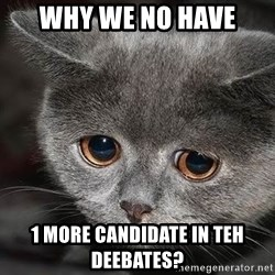Sadcat - WHY WE NO HAVE 1 MORE CANDIDATE IN TEH DEEBATES?