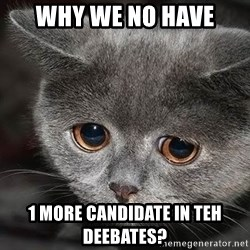 sad cat - WHY WE NO HAVE 1 MORE CANDIDATE in TEH DEEBATES?