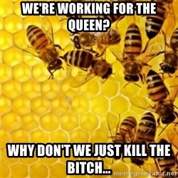 Honeybees - WE'RE WORKING FOR THE QUEEN? WHY DON'T WE JUST KILL THE BITCH...