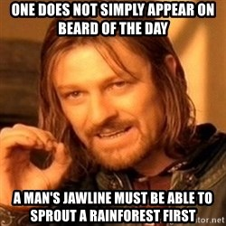 One Does Not Simply - one does not simply appear on beard of the day a man's jawline must be able to sprout a rainforest first