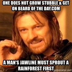 One Does Not Simply - one does not grow stubble & get on beard of the day.com a man's jawline must sprout a rainforest first