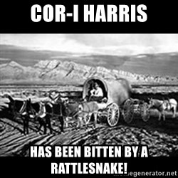 Oregon Trail Vindictus - Cor-i harris has been bitten by a rattlesnake!