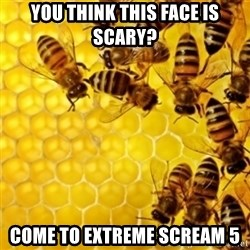Honeybees - YOU THINK THIS FACE IS SCARY? COME TO EXTREME SCREAM 5