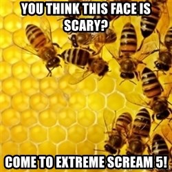 Honeybees - YOU THINK THIS FACE IS SCARY?  COME TO EXTREME SCREAM 5!