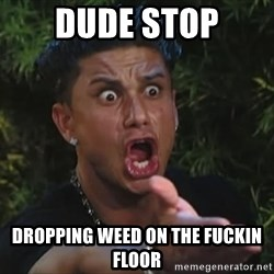 Pauly D - DUDE STOP DROPPING WEED ON THE FUCKIN FLOOR