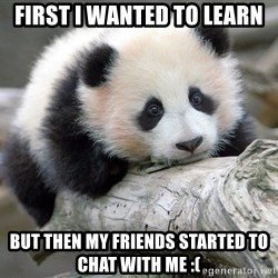 sad panda - first i wanted to learn but then my friends started to chat with me :(