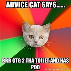 Advice Cat - ADVICE CAT SAYS...... BRB GTG 2 THA TOILET AND HAS POO