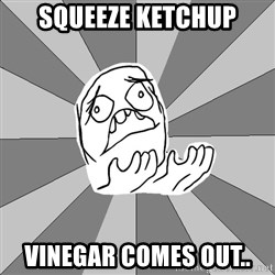 Whyyy??? - Squeeze ketchup VinEgar comes out..