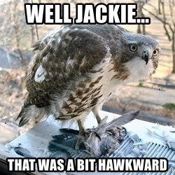 Hawkward - Well Jackie... That was a bit hawkward