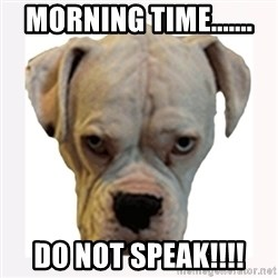 stahp guise - MORNING TIME....... DO NOT SPEAK!!!!