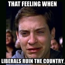 crying peter parker - that feeling when liberals ruin the country