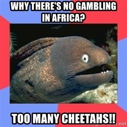 Bad Joke Eels - Why there's no gambling in Africa? Too many Cheetahs!!