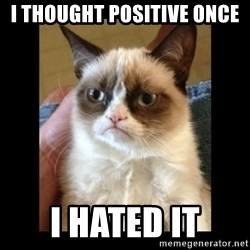 Frowning Cat - I thought positive once I hated it