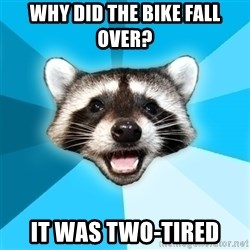 Lame Pun Coon - Why did the bike fall over? it was two-tired
