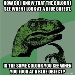 Philosoraptor - how do i know that the colour i see when i look at a blue obfect, is the same colour you see when you look at a blue object?