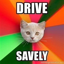 Advice Cat - Drive savely