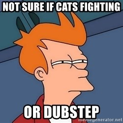 Futurama Fry - not sure if cats fighting or dubstep