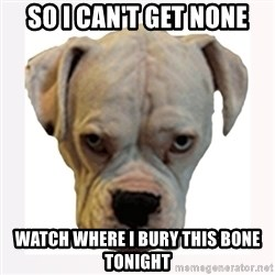 stahp guise - so i can't get none watch where i Bury this bone tonight