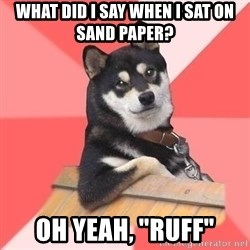 "Cool Dog - what did i say when i sat on sand paper? oh yeah, ""ruff"""