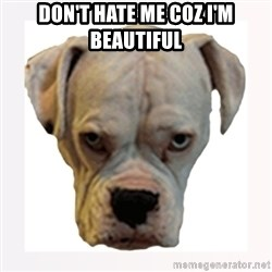 stahp guise - DON'T HATE ME COZ I'M BEAUTIFUL