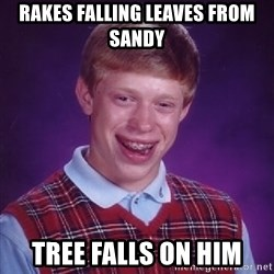 Bad Luck Brian - rakes falling leaves from sandy tree falls on him