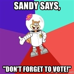 "Sandy Spongebob - Sandy says, ""Don't forget to vote!"""