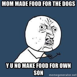 Y U No - mom made food for the dogs Y u no make food for own son