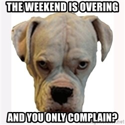 stahp guise - The weekend is overing  and you only complain?