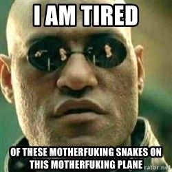 What If I Told You - i am tired of these motherfuking snakes on this motherfuking plane