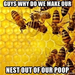 Honeybees - GUYS WHY DO WE MAKE OUR NEST OUT OF OUR POOP